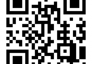 15701I will create professional qr code design with your logo