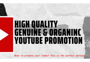 25100High-Quality Genuine and Organic YouTube Promotion