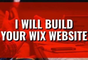 30130I will build your wix website