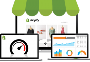 32274I will create a 6 figure Shopify DropShipping store.