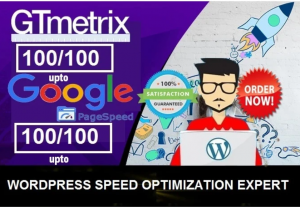 27431I will speed optimize your website