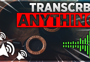 I will transcribe any audio or video in less than 24h