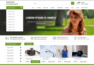 I will design a responsive WordPress website or blog in 72hrs