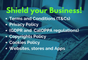 I will write a Professional Privacy Policy (Full GDPR) for your Websites or App