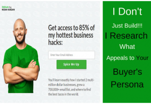 I will professionally build and setup click funnels landing and sales funnel