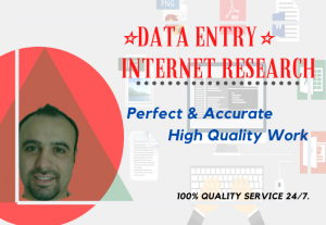 Professional virtual assistant for data entry typing copy paste and web research