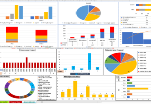 45142I will create Data visualization with graphic in excel