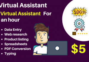 49373I will be your virtual assistant for 3 hours data entry, web research, listing