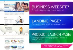 I will create a professional website for you