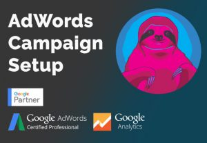 I will manage and optimize your google ads adwords PPC campaigns