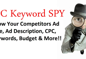 I will provide 10 competitors PPC keywords, ad copies, budget, etc