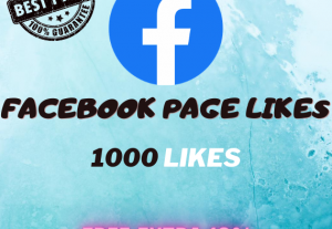 FB Page + FREE GIFT (CHEAPEST IN MARKET)