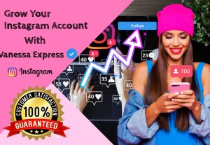 I will professionally manage and promote your instagram account