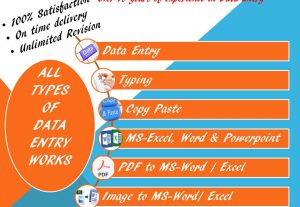 will do all types of Data entry works