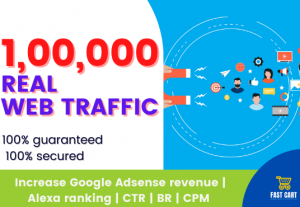 web traffic up to 100000 real human visitors within 30 days No Bots