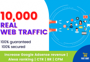 web traffic up to 10000 real human visitors within 10 days No Bots