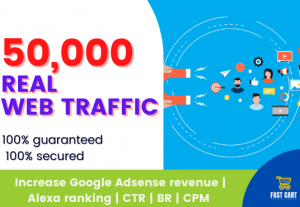 Web traffic up to 50000 real human visitors within 30 days No Bots