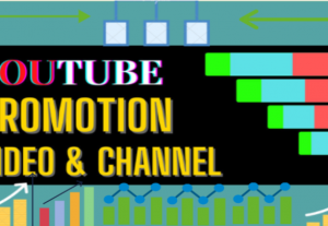 I will do organic youtube video promotion and marketing