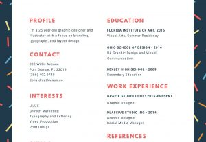 I will provide a real professional quality CV creation service
