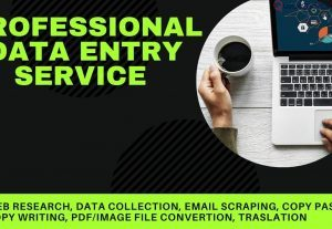 126125Professional  Data Entry Service