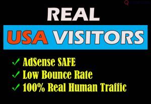 I will drive USA targeted real traffic to your website