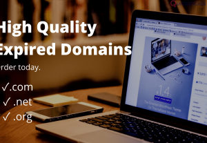 High Quality Expired Domain Names