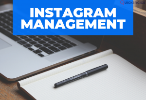I will professionally manage and grow your instagram (3 posts per week -1 month)
