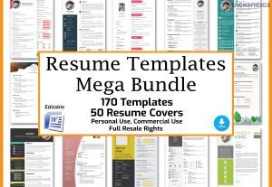 I will send you 170 resume templates sets