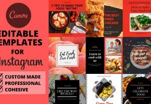 I will design canva instagram templates for your posts, stories, feed