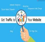 Traffic to your Website from WorldWide/ Real