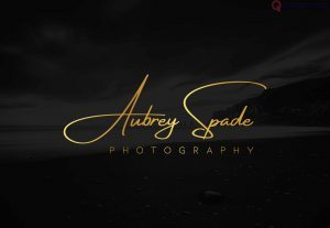 234141I will design a luxury signature and handwritten business logo(2 HQ logos)