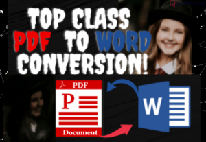 258255Will convert PDF To Word & Word To PDF Now